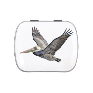 Pelican Flying Candy Tin, Pill or Stash Box Jelly Belly Candy Tin