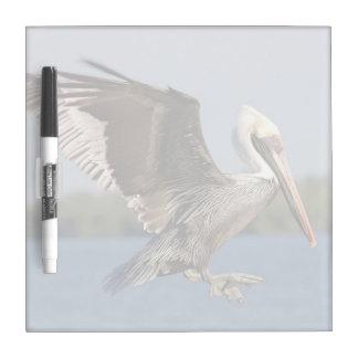 Pelican flying Dry Erase Board