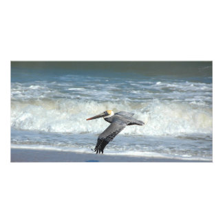 Pelican Flying over the ocean surf photocard Card