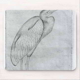 Pelican, from the The Vallardi Album Mouse Pad