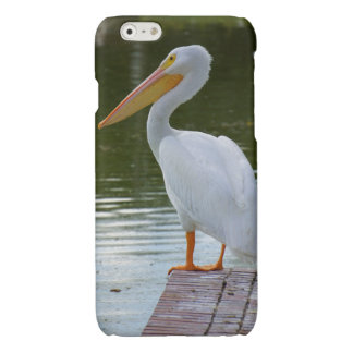 Pelican Glossy iPhone 6 Case