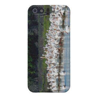 Pelican Haven iPhone case