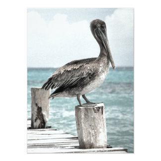 PELICAN IN BRIEF! (a bird design) ~ Card