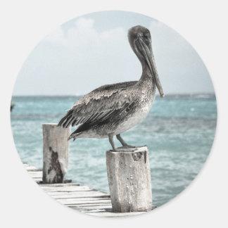PELICAN IN BRIEF: CHILLIN'! (a shore bird design) Classic Round Sticker
