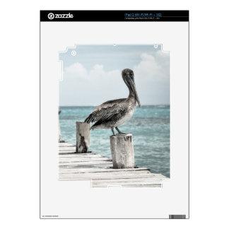 PELICAN IN BRIEF: CHILLIN'! (a shore bird design) iPad 2 Decals