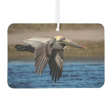 Beach Themed Pelican in flight air freshener