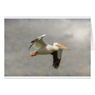 Pelican In Flight Card