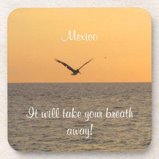 Pelican in Flight; Mexico Souvenir Coaster