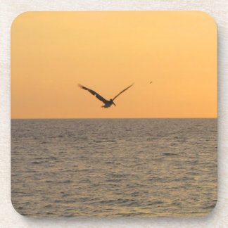 Pelican in Flight; No Greeting Coaster