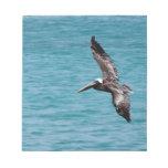 Pelican in flight scratch pads