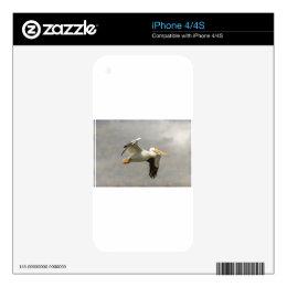 Pelican In Flight Skins For iPhone 4