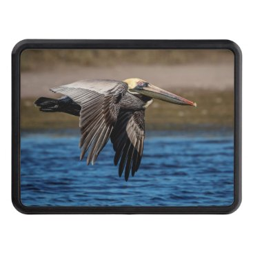 Beach Themed Pelican in flight tow hitch cover