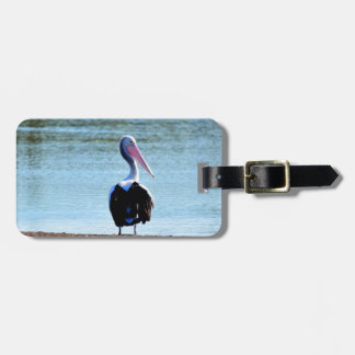 PELICAN IN RURAL QUEENSLAND AUSTRALIA TAG FOR LUGGAGE