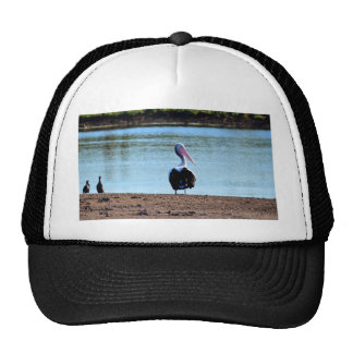 PELICAN IN RURAL QUEENSLAND AUSTRALIA TRUCKER HAT