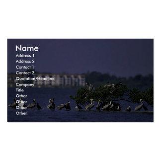 Pelican Island National Wildlife Refuge, Florida Business Card Template