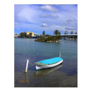 pelican island postcard