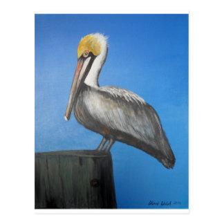 Pelican items postcard