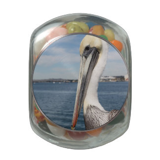 Pelican Jelly Belly Candy Jar