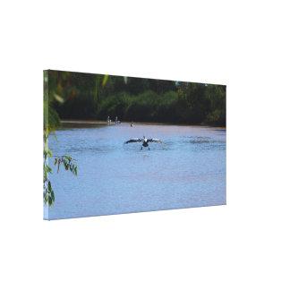 Pelican landing canvas print