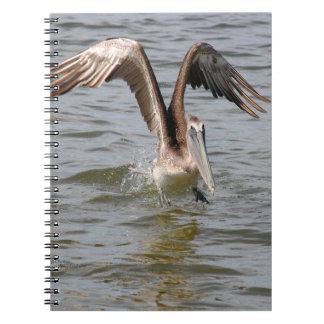 Pelican landing in water Notebook