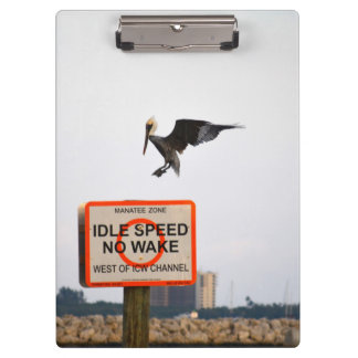 pelican landing on channel sign in florida clipboard