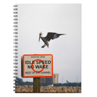pelican landing on channel sign in florida notebook