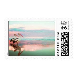 Pelican Love Stamps