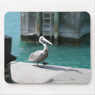 Pelican Mouse Pads