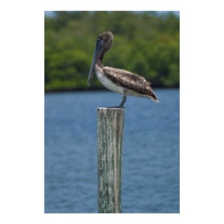 Pelican on a Pole Poster