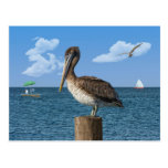 Pelican on a Post Postcard