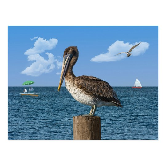 Pelican on a Post Postcard