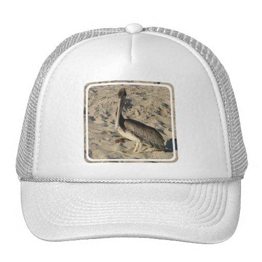 Pelican on Beach  Baseball Hat