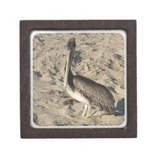 Pelican on Beach Gift Box Premium Gift Boxes