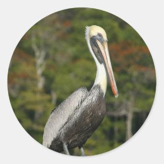 Pelican on Blue Classic Round Sticker