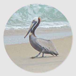 Pelican on Outer Banks OBX NC Classic Round Sticker