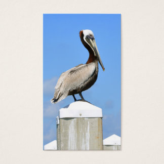 Pelican on Perch Business Card