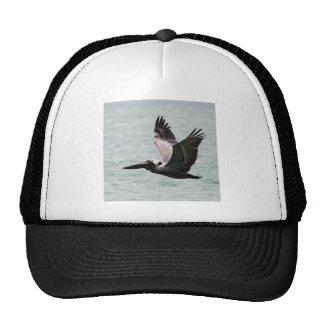 Pelican Photo Mesh Hats