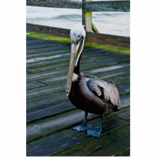 Pelican Photo Sculpture Key Chain