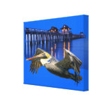 Pelican Pier Canvas Print