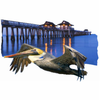 Pelican Pier Cutout