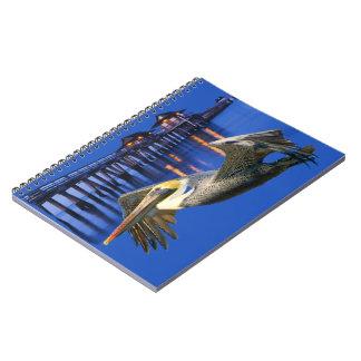Pelican Pier Notebook