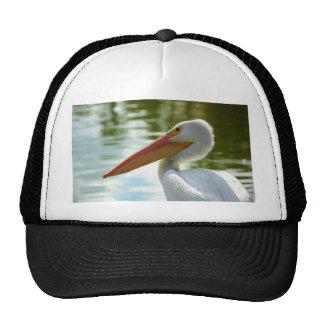 Pelican Posed Trucker Hat