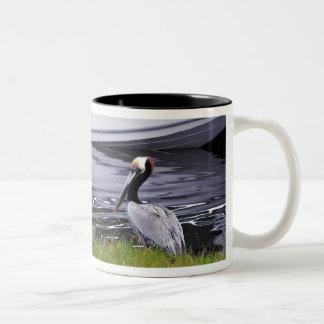 Pelican Poser Two-Tone Coffee Mug