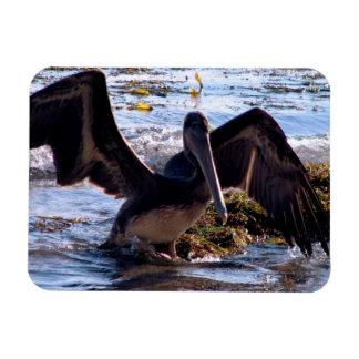 Pelican Flexible Magnets
