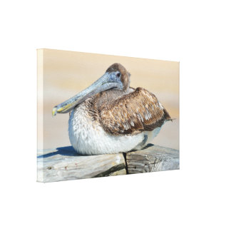 Pelican resting on the fishing pier canvas print