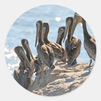 Pelican Rock Classic Round Sticker