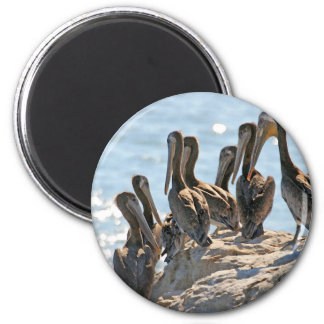 Pelican Rock Fridge Magnet