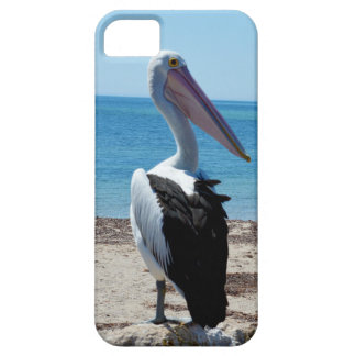 Pelican_Rock, _iPhone_5/5S_Case, Funda Para iPhone 5 Barely There