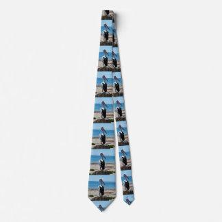 Pelican_Rock,_ Neck Tie