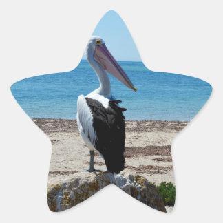 Pelican_Rock, _ Pegatina En Forma De Estrella